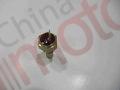 Датчик температуры FOTON 1099 (одноконтактный) на стрелку Т65202003