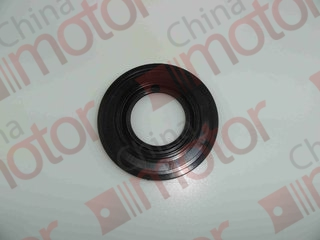 Сальник ступицы задней наружный FOTON 1049A (49x102x8-10)